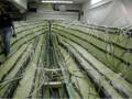 真空导入工艺玻璃钢游艇生产过程
