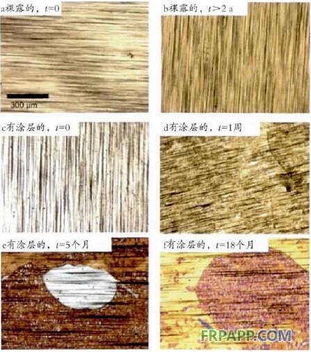 石墨烯在功能涂料中的应用概述
