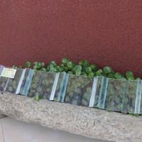 批发frp玻璃钢阻燃阳光瓦胶衣采光板屋顶透明采光瓦防腐板价格