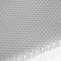 轻质高强苏州贝芯微孔铝蜂窝芯